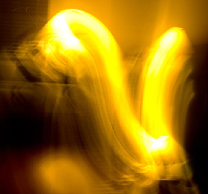 YELLOW SWAN Image