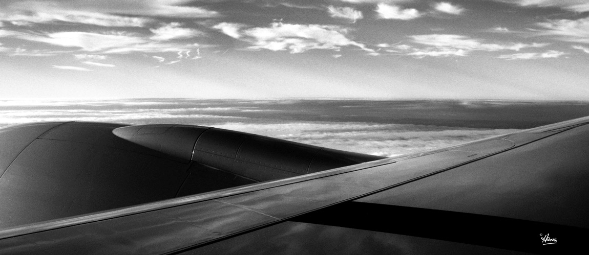 IN FLIGHT Image